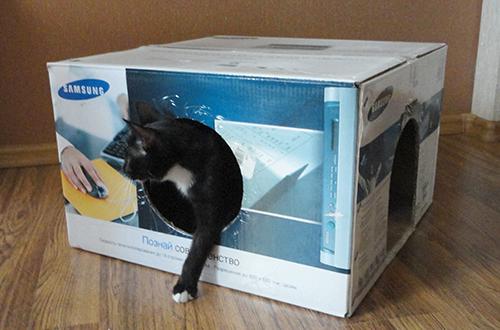 домик для кошек своими руками из коробки