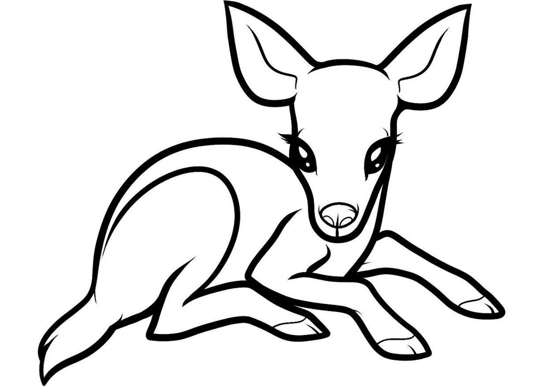 Раскраска олененок