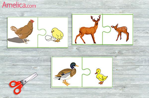 игра про животных, карточки для детей с животными, картинки животных для детей, картинки домашних животных, картинки диких животных
