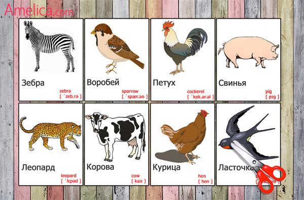 карточки животные на английском языке, игры про животных