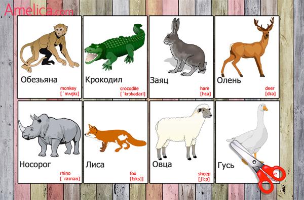 Животные поанглийски для детей с картинками 3