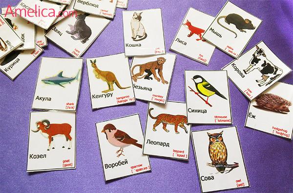 картинки животных для детей скачать бесплатно, карточки животные на английском языке