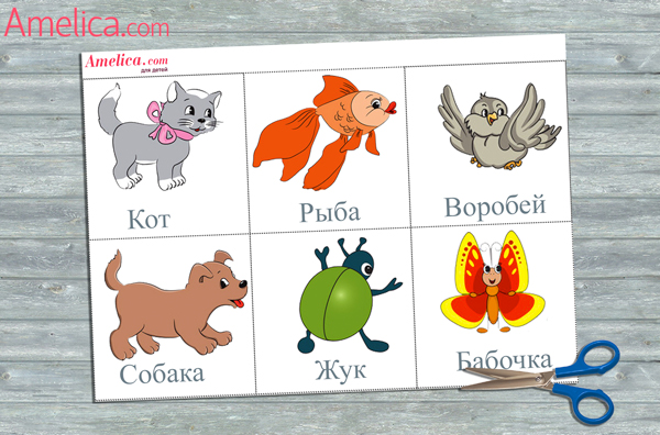 знакомим детей с животными картинки