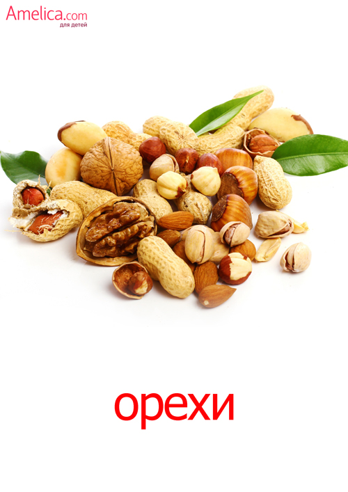 изучаем орехи с детьми, карточки Домана орехи скачать