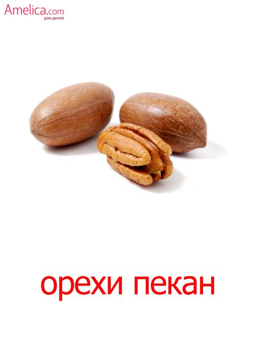 карточки Домана орехи скачать, картинки орехи для детей