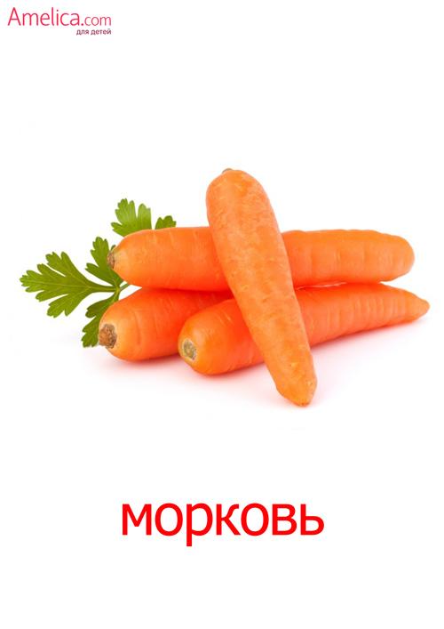картинки овощи для детей, развивающие карточки, зелень картинки
