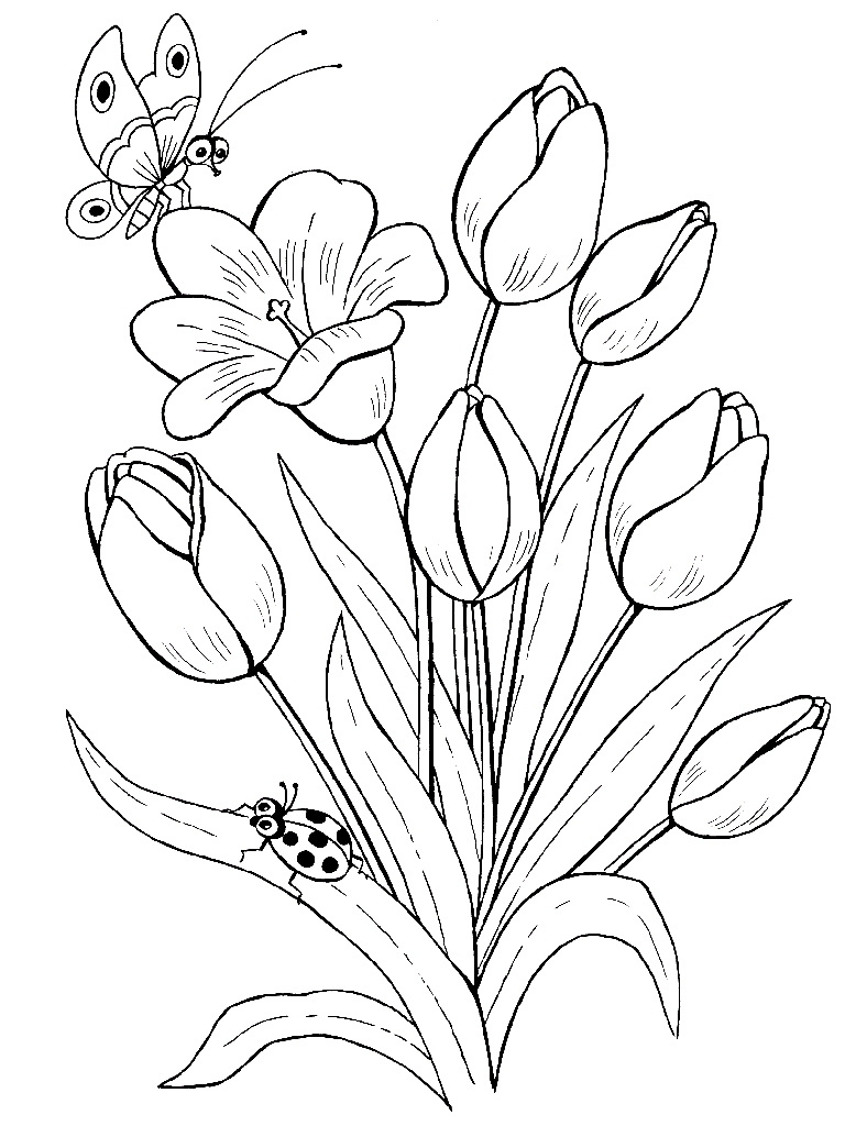 Для раскраски цветы