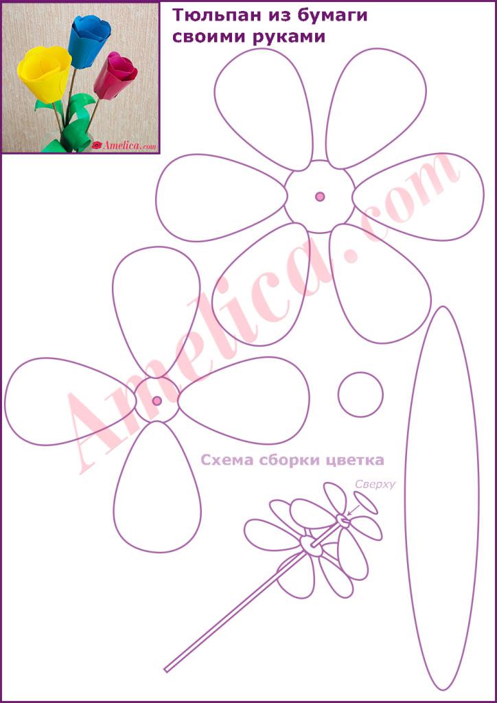 Цветы из цветной бумаги своими руками схемы шаблоны