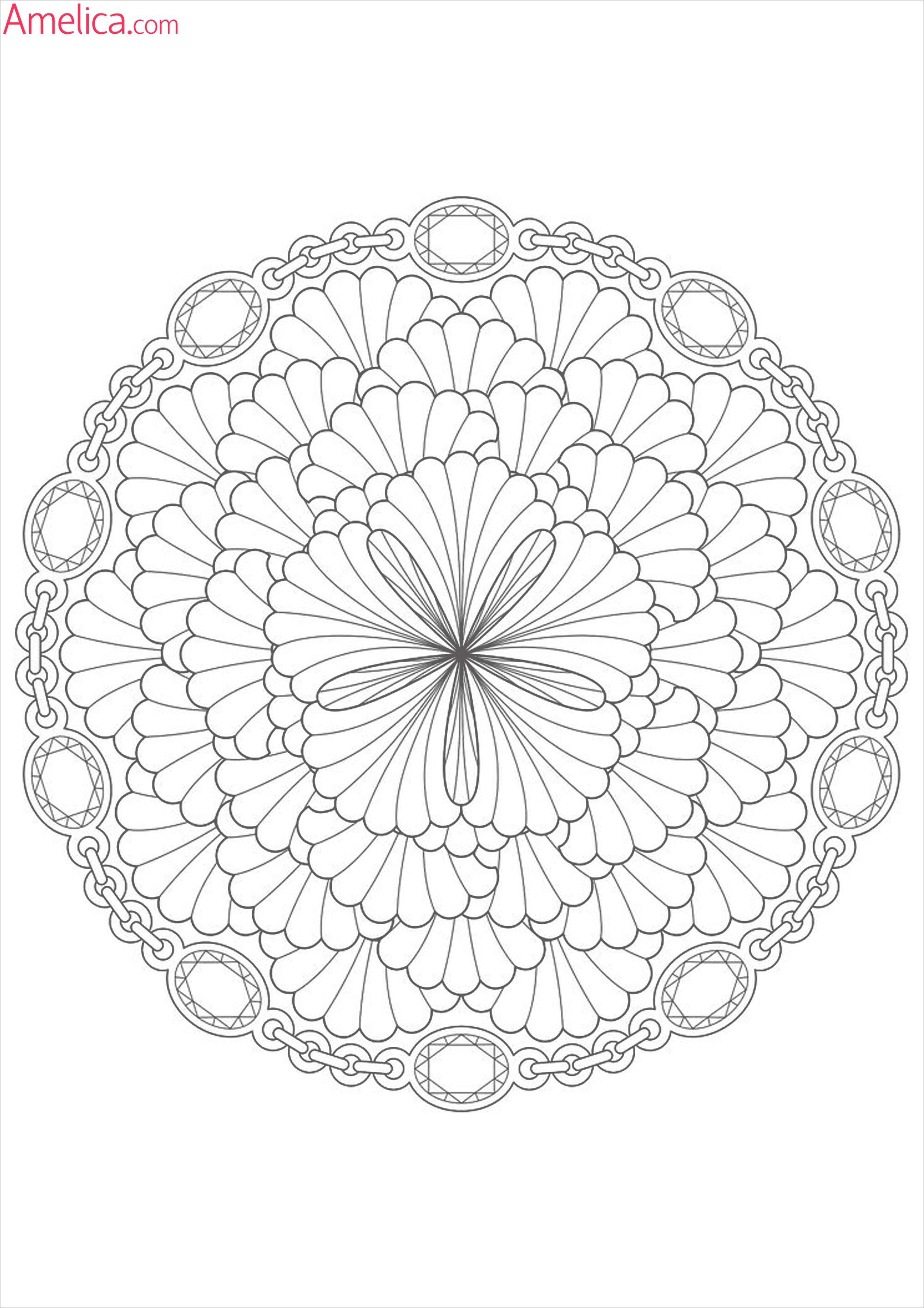 Раскраска цветы лотос