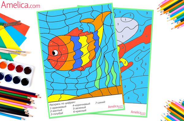 Раскраска с цифрами и цветами для детей
