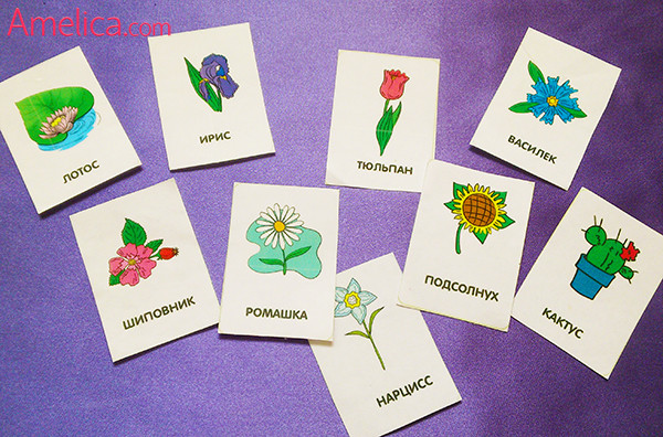 детские картинки для детей распечатать, развивающие карточки цветы для детей 1,2,3,4 года