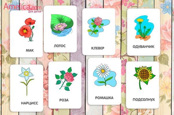 детские картинки скачать, картинки для детей распечатать, развивающие карточки цветы для детей 1,2,3,4 года