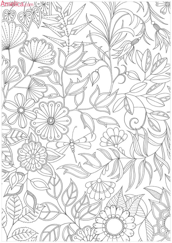 раскраски взрослые антистресс, раскраски для взрослых волшебный сад скачать, раскраски зачарованный лес распечатать