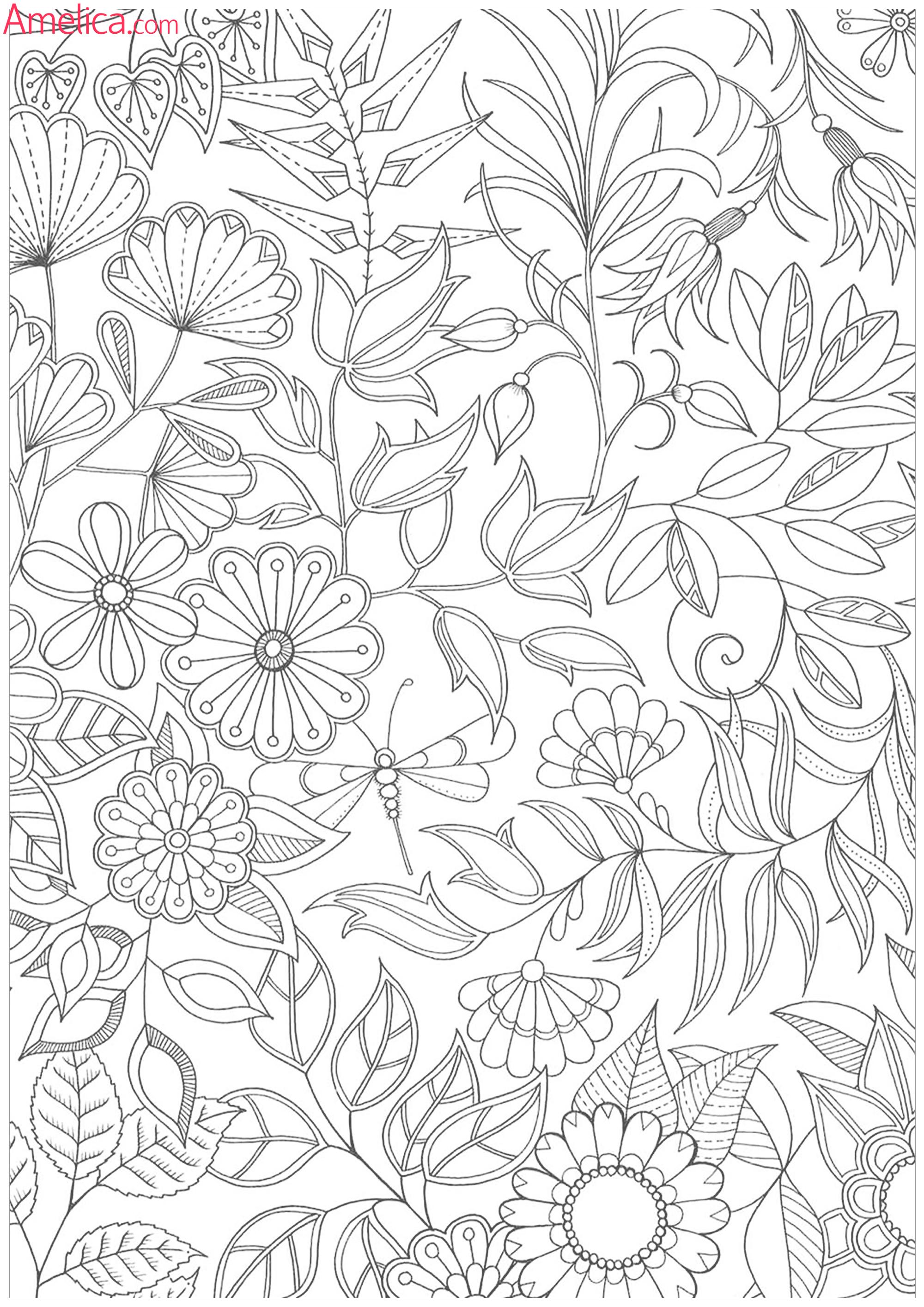раскраски взрослые волшебный сад, зачарованный лесAmelica
