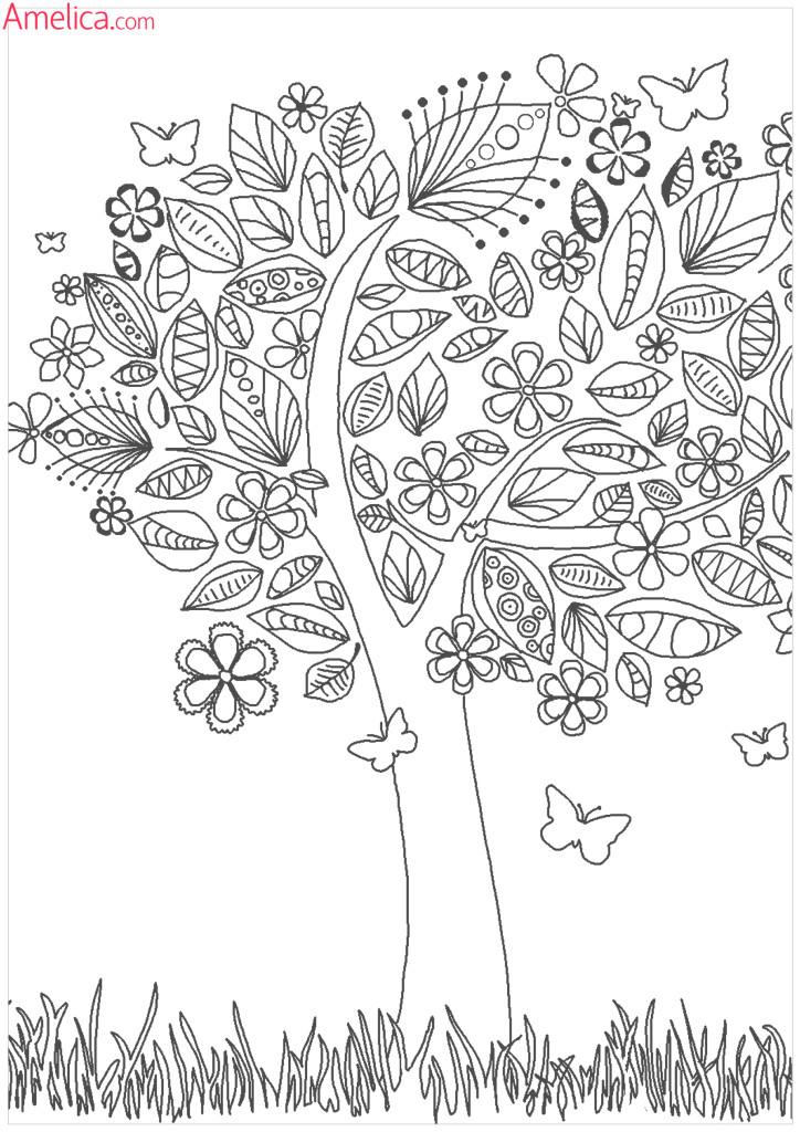 раскраски для взрослых волшебный сад скачать, раскраски зачарованный лес распечатать