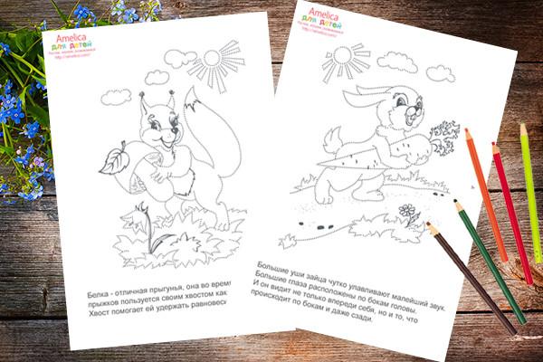 рисунки по точкам, раскраски по точкам для детей, рисунки раскраски про животных