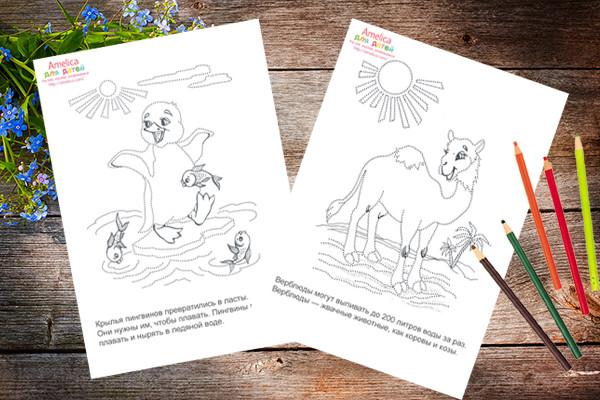рисунки соедини точки, рисунки по точкам, раскраски по точкам для детей,