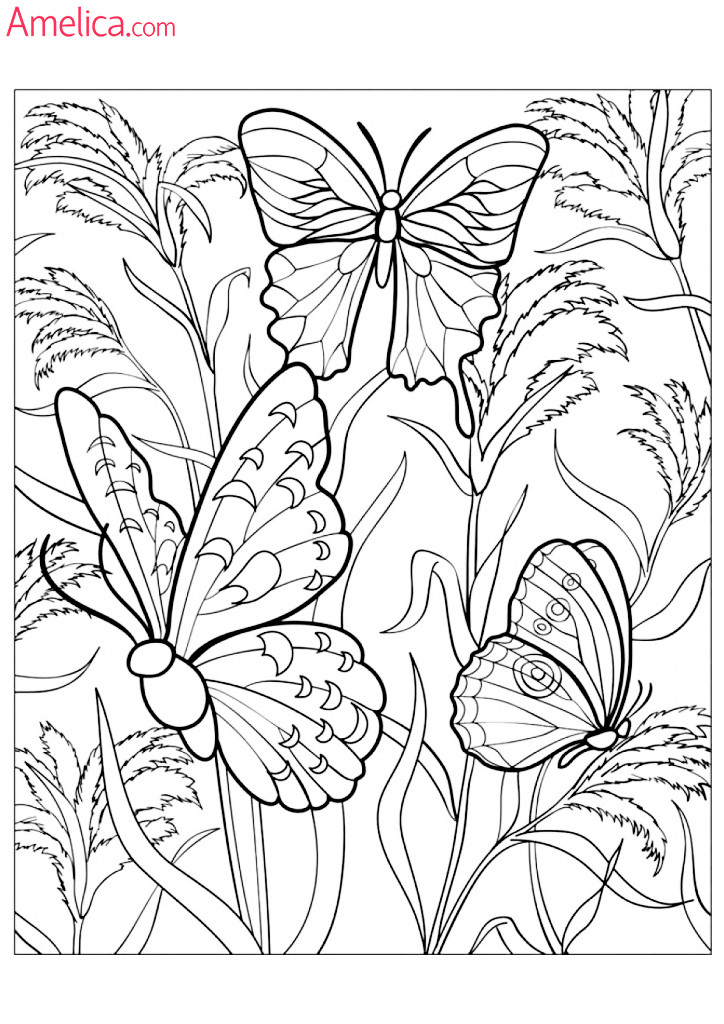 Арт-терапия раскраска - бабочки