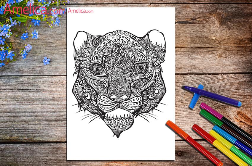 Картинки мышь раскраски