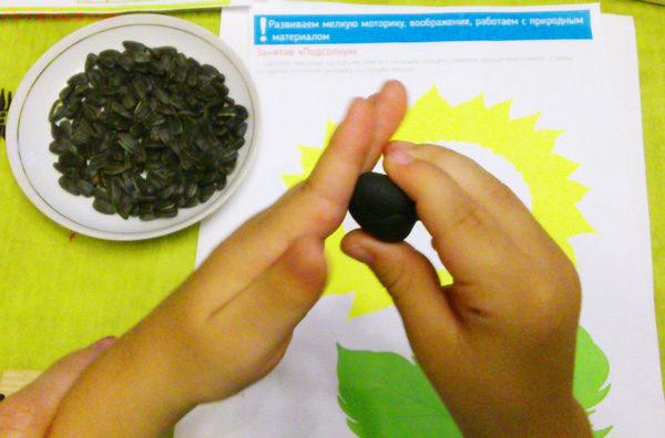 занятия с природным материалом для детей, развивающее занятие для детей, развитиемелкой моторики