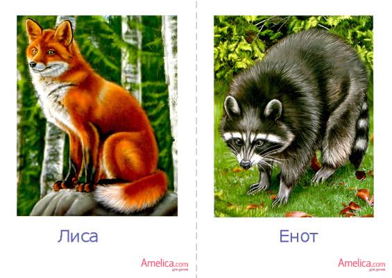 Распечатать картинки зверей для детей
