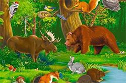 раскраски животные распечатать бесплатно
