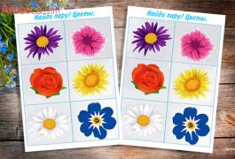 игра мемори детям, дидактическая игра для малышей найди пару